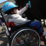 Uczeń poruszający się na wózku podczas czyszczenia konia.