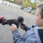 Uczeń czeszący ogon konia.