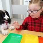 Uczennica w asyście psa podczas aktywności terapeutycznej.