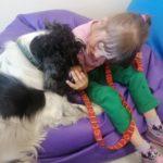 Dziewczynka głosząca i spoglądająca na psa terapeutę.