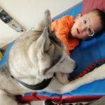 Podopieczny z psem terapeuta podczas zajęć dogoterapii.
