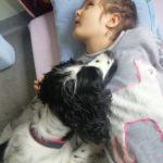 Pies terapeuta przytulający się do podopiecznej.