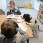 Chłopcy podczas stolikowych zajęć terapeutycznych w asyście psa terapeuty.
