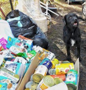 Wizerunek pasa oraz zebranych darów psiej i koeciej karmy.