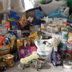 Zebrane dary: karma mokra i sucha dla psów i kotów.