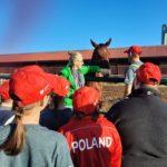 Ekipa uczestników wyjazdu otaczająca konia z zagrodzie.